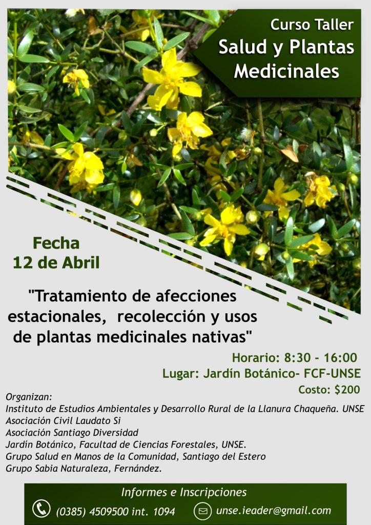 CURSO TALLER SALUD Y PLANTAS MEDICINALES