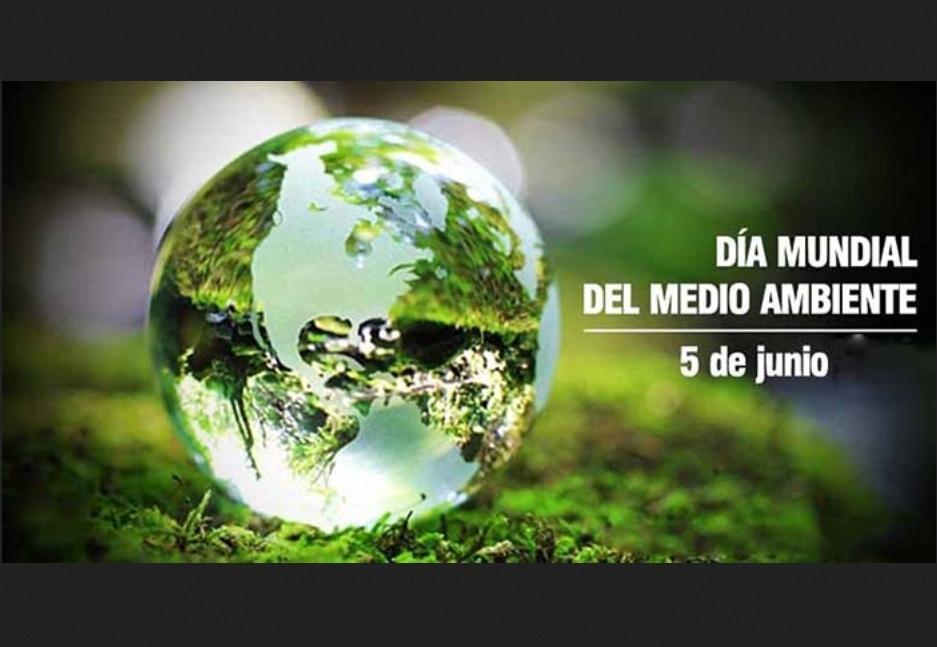 5 de Junio: Día Mundial del Medio Ambiente
