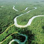 14 de marzo: Día Mundial de los Ríos Vivos