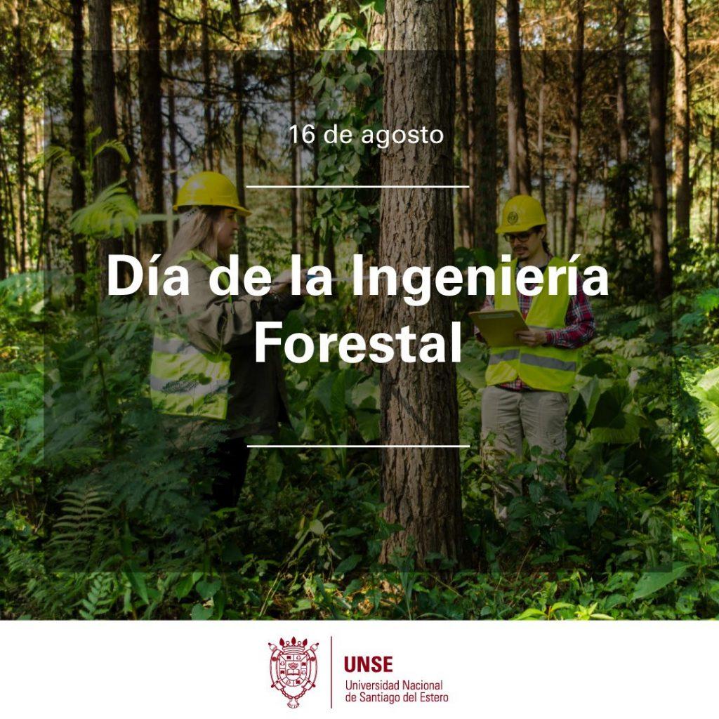 16 de agosto: Día de la Ingeniería Forestal
